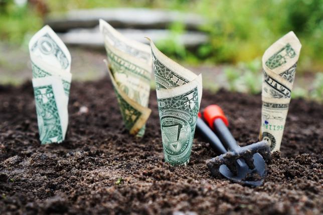 cum să faci bani pe internet fără site- ul tău web bani rapidi pe internet fără investiții