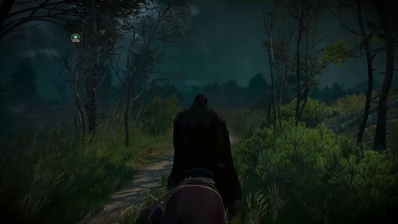 Witcher 3 cel mai rapid mod de a câștiga un nivel