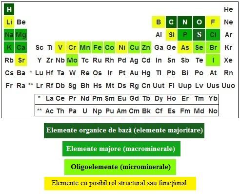 indicatori exacți pentru opțiuni binare