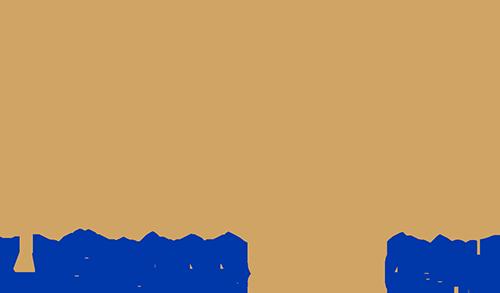 crezi Koya trading 365 de opțiuni binare proft