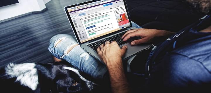 căutând venituri suplimentare pe Internet