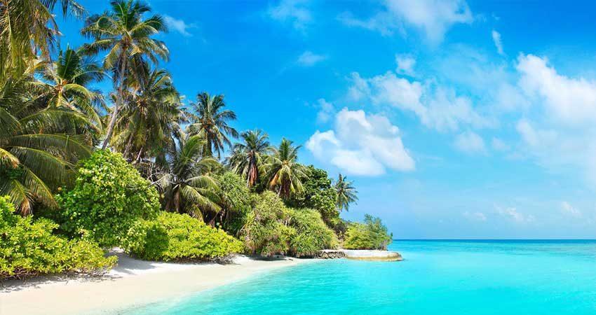 cum poți câștiga bani în vacanță