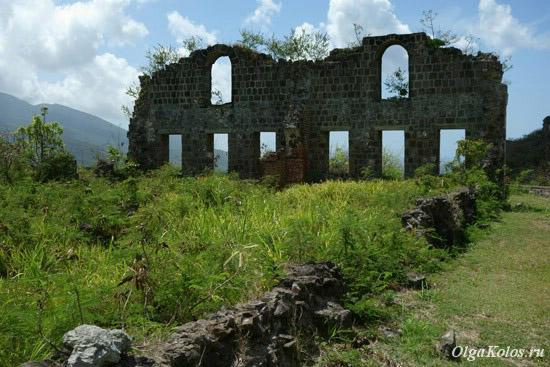 desemnarea opțiunilor pe forturi