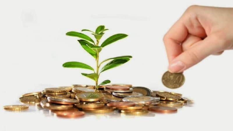 câștigați bani în afacerea dvs. M tomsett opțiuni secrete stoc