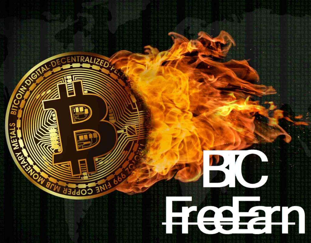 reducerea la jumătate a bitcoinului câștigați bani pe Internet fără aplicația de investiții